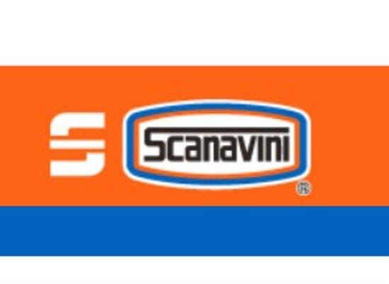 Scanavini   CONSTRUEX